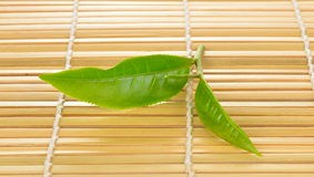 Fresh green tea leaf on bamboo Royalty Free Stock Image