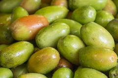 Fresh Green Tomatoes Stock Photography