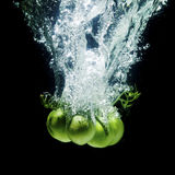 Fresh, green tomatos Stock Image