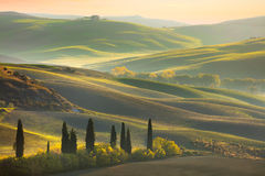 Fresh Green tuscany landscape Stock Photo
