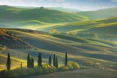 Fresh Green tuscany landscape Royalty Free Stock Image