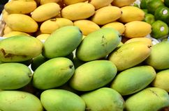 Fresh green unripe mango fruits symmetrically to attract buyers at market stall. Fresh green unripe mango fruits symmetrically to attract buyers at city market Stock Photos