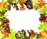 Fresh green vegetable frame Royalty Free Stock Photo