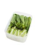 Fresh green vegetable in plastic box Stock Images