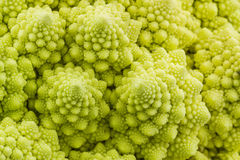 Fresh of green vegetable,Romanesco broccoli, Roman cauliflower. Stock Photography