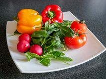 Fresh green vegetable salad with radish, tomatoes, color peppers. On the white plate Stock Images
