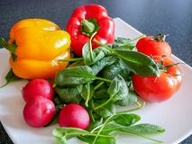 Fresh green vegetable salad with radish, tomatoes, color peppers. On the white plate Stock Photos