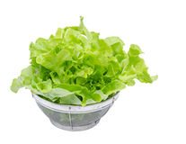 Fresh green vegetables in basket Stock Photos