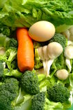 Fresh green vegetables and egg Stock Image