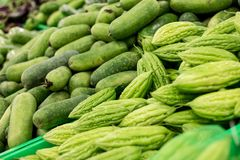Fresh green vegetables - winter melons and bitter grounds - are laying in supermarket. royalty free stock photo