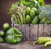 Fresh green vegetables. Stock Image