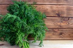 Fresh green vitamin Dill on the Brown boards stock photography