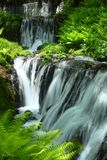 Fresh green and waterfall Stock Photos