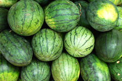 Fresh green watermelon Royalty Free Stock Images