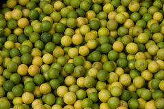 Fresh Green yellow limes piled at fruit market. Fresh Green and yellow limes piled at fruit market in southern Ecuador stock photography