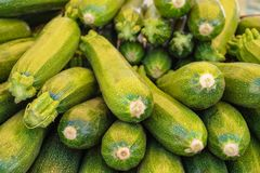 Fresh green zucchini or courgette in a farmer agricultural open air market, seasonal healthy food. Concept of biological, bio products, bio ecology, grown by stock photo