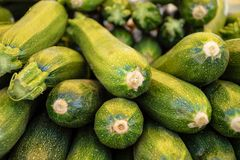 Fresh green zucchini or courgette in a farmer agricultural open air market, seasonal healthy food. Concept of biological, bio products, bio ecology, grown by royalty free stock images