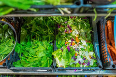 Fresh greenery and currot sold on the market Royalty Free Stock Photos