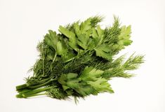 Greenery. Fresh greenery. Dill. Parsley. A bunch of greenery. Ingredient of a healthy diet. Healthy diet. Salad. Fresh greenery. Parsley and dill. Useful greens Royalty Free Stock Photo