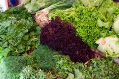 Fresh greenery at vegetable market Royalty Free Stock Photo