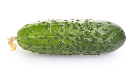 Fresh greenhouse cucumber Royalty Free Stock Photography