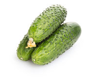 Fresh greenhouse cucumbers. On white background Royalty Free Stock Photo