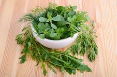 Fresh greens Royalty Free Stock Photos