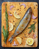 Fresh grey mullet fish lies on light wooden cutting board with l. Emon segments, onion slices, rosemary branches, peppercorns, paprika, chilli pepper and other Stock Image