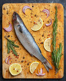 Fresh grey mullet fish lies on light wooden cutting board with l. Emon segments, onion slices, rosemary branches, peppercorns, pepper and other spices around Royalty Free Stock Photos