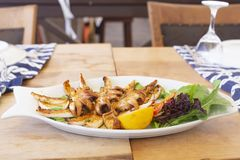 Delicious grilled baby octopus with rocket leaves and salad stock photos