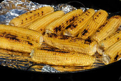 Fresh Grilled Corn stock photography