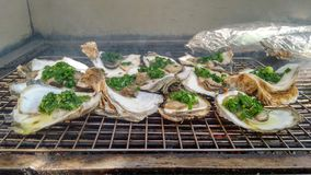 Fresh Grilled Oyster on a Barbecue Grill royalty free stock photos