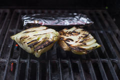 Fresh grilled raw fennel root vegetable organic. Fresh fennel root vegetable garden harvest healthy cooking Stock Photo