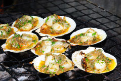 Fresh grilled scallops. On stove Stock Photography