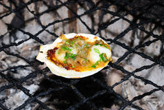 Fresh grilled scallops Stock Photography