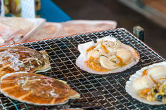 Fresh grilled scallops. In local market Royalty Free Stock Images
