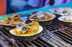 Fresh grilled scallops. In market Royalty Free Stock Photo