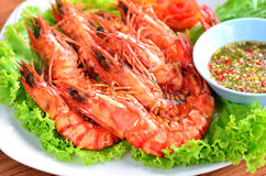 Fresh grilled shrimps Royalty Free Stock Photo