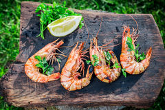 Fresh grilled shrimps with lemon and parsley Royalty Free Stock Photos