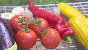 Fresh grilled vegetables with drops of water on the grid stock video