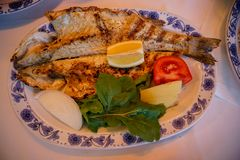 Fresh grilled whole sea bass fish with roasted potato, green salad, tomato and yellow lime on white oval plate with blue pattern. At Galata bridge, Istanbul stock image