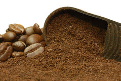 Fresh ground coffee. Coffee beans and fresh ground coffee in a scoop Stock Image