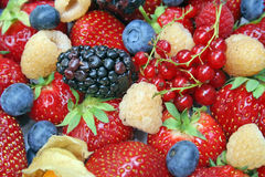 Fresh group colored fruits. Stock Photo
