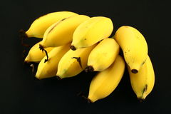 Fresh Group of many organic tropical bananas Stock Photos