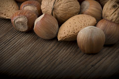 Fresh group of nuts Royalty Free Stock Images