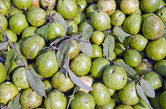 Fresh guava exotic fruits group in asian street market,India Stock Photos