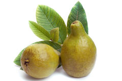 Fresh Guava fruit with leaves Royalty Free Stock Photo