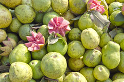 Fresh guava fruits group in street market Delhi, India Stock Images