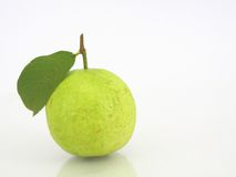 Fresh guava Isolated. Fresh green guava Isolated on White background Royalty Free Stock Images