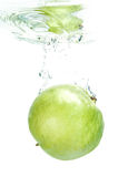 Fresh guava Stock Photography